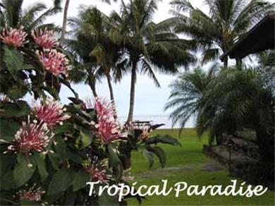 Hale Puko`o Cottage Vacation Rental Tropical Paradise